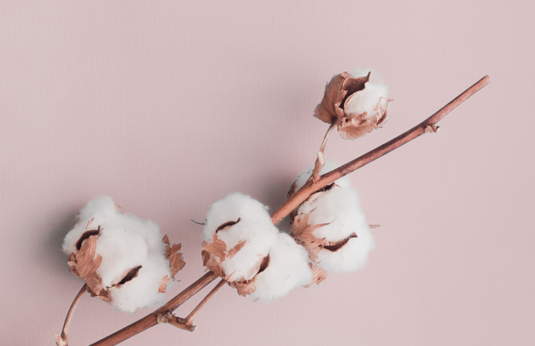 Preferred Cotton – What is it & Why is it Superior?