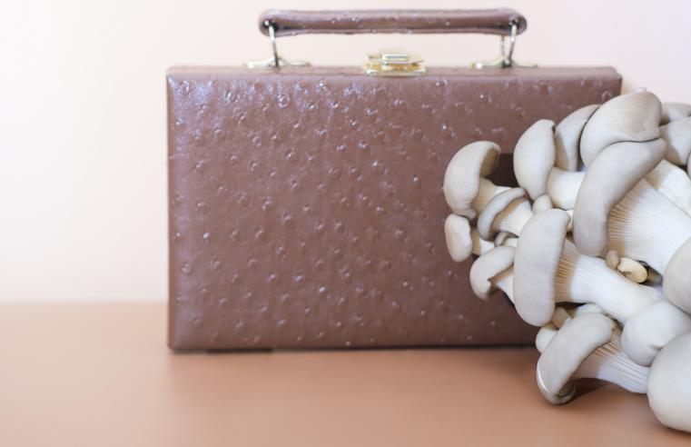 Leather Alternatives